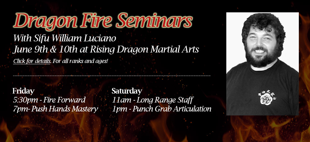 2017 Dragon Fire Seminars