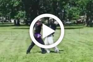2014_demo_stunt_fight